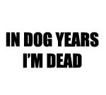 IN DOG YEARS I'M DEAD DECAL STICKER