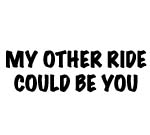 MY OTHER RIDE COULD BE YOU DECAL